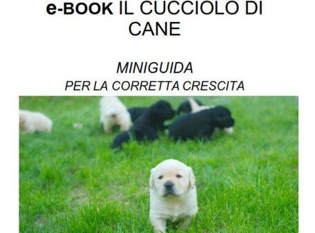 ebook cucciolo di cane
