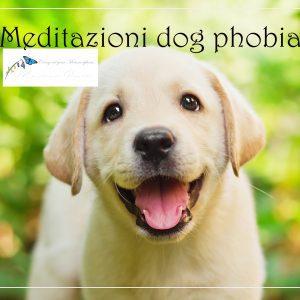 Meditazioni dog fobia